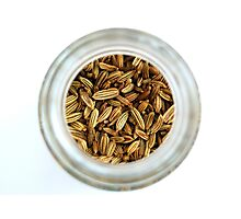 Closeup Aromatic Exotic Striped Indian Cuisine Fennel Seeds Jar Photographic Print