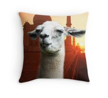 Did She Ever Love Me - By Philosimals Throw Pillow
