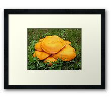 ground dweller Framed Print