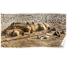 Sand Sculpture Poster