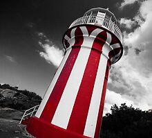 The Hornby Lighthouse by Darryl Leach
