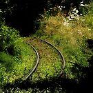Chemin de Fer ~ Part Two by artisandelimage