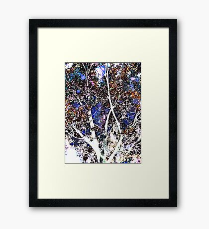 quiet tree Framed Print