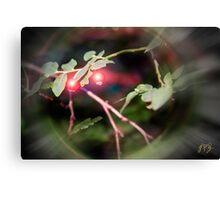 Magical Ruby Elf Berries Canvas Print