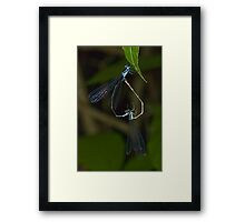 Inverted Heart Framed Print