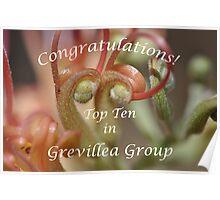 Grevillea Top Ten Banner Poster
