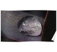 Water Droplet Mirror Ball Poster