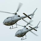 AS 350BA Squirrel Helicopter by inmotionphotog