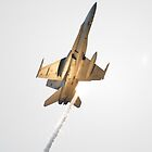 F/A-18 Hornet by inmotionphotog