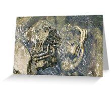 natural history III Greeting Card