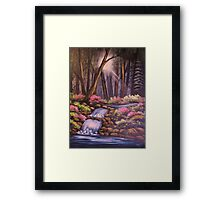 Waterfalls in the Forest Framed Print