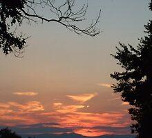Orange Sunset - Blue Ridge Mtns Rapidan, VA by ellyd