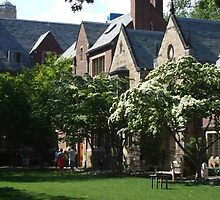 Yale University Commons Dormitories by ellyd