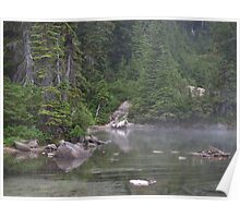 Misty morning at Lake Mowich in Washington Poster
