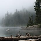 Lake Mowich by Gretchen Mayberry