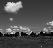stone circle, Kilmacoliver Hill, Tullahought, County Kilkenny, Ireland by Andrew Jones