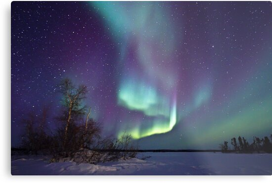 Aurora Borealis over Gordon Lake by Michael S Nolan