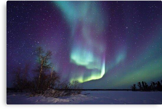Aurora Borealis over Gordon Lake by Michael S Nolan