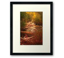 Brush Ck. vert Framed Print