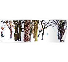 snowy walk Poster