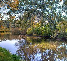 Lazy River by ECH52