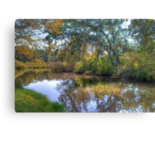Lazy River Canvas Print