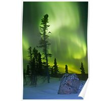 Green curtains over Yellowknife Poster