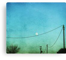 playful(l) moon Canvas Print