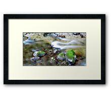 river blur Framed Print