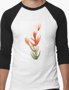 Wildfire Wildflower Men's Baseball ¾ T-Shirt