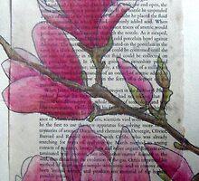Magnolias VII by Alexandra Felgate