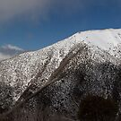 Mt Feathertop panorama by Will Hore-Lacy