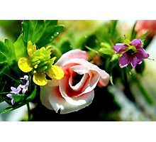 Multitude of Flowers Photographic Print