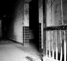 asylum-1 by peter krahn