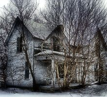 Abandoned Tree House by wiscbackroadz