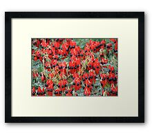 Simply Red. Framed Print