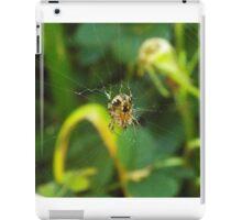 Orb Weaver iPad Case/Skin