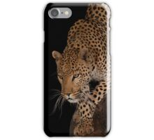 Leopard 1 iPhone Case/Skin