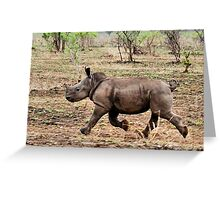 "*WHITE RHINOCEROS* - Ceratotherium simum - YES! I CAN DO IT ! (EVER SEEN A BABY RHINO... ""TAKE OFF"")   Greeting Card"