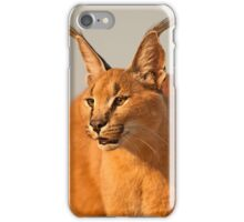 Caracal 2 iPhone Case/Skin