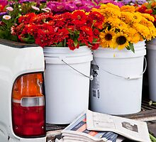 Tailgate Flowers by phil decocco