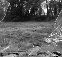 Broken Glass by Rees Adams