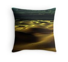 Frontiers Throw Pillow