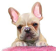 frenchie puppy  by Cazzie Cathcart
