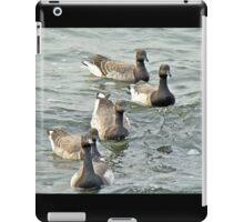Atlantic Brant Geese - Branta bernicla hrota iPad Case/Skin