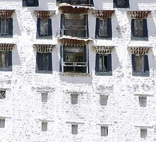 Potala Palace, Detail by Cageling