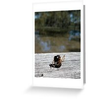 Ant Yoga Greeting Card