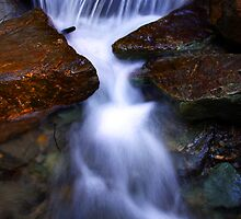 Liquid Beauty   by TLCPhotos