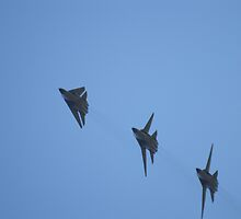 F-111 flying formation by weigi