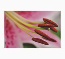 Stargazer Lilly Macro, As Is T-Shirt